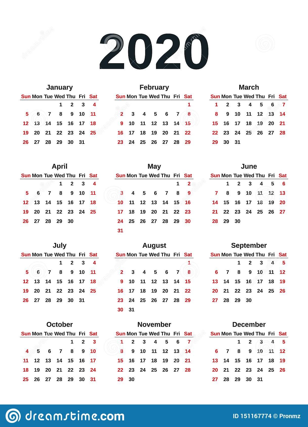 2020 Calendar Year. Vector Illustration. Template Planner