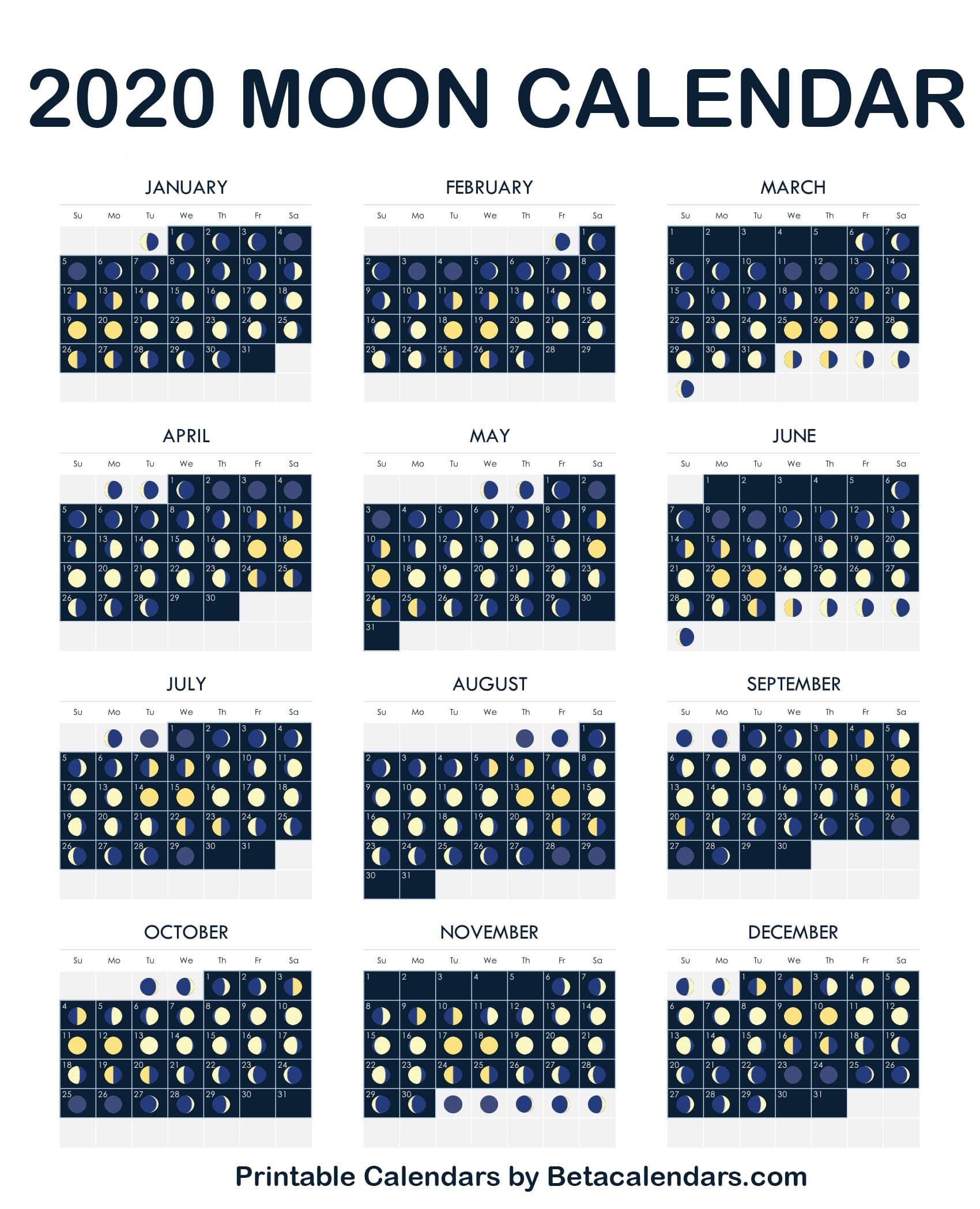 2020 Moon Calendar | October Calendar, Moon Calendar, Moon