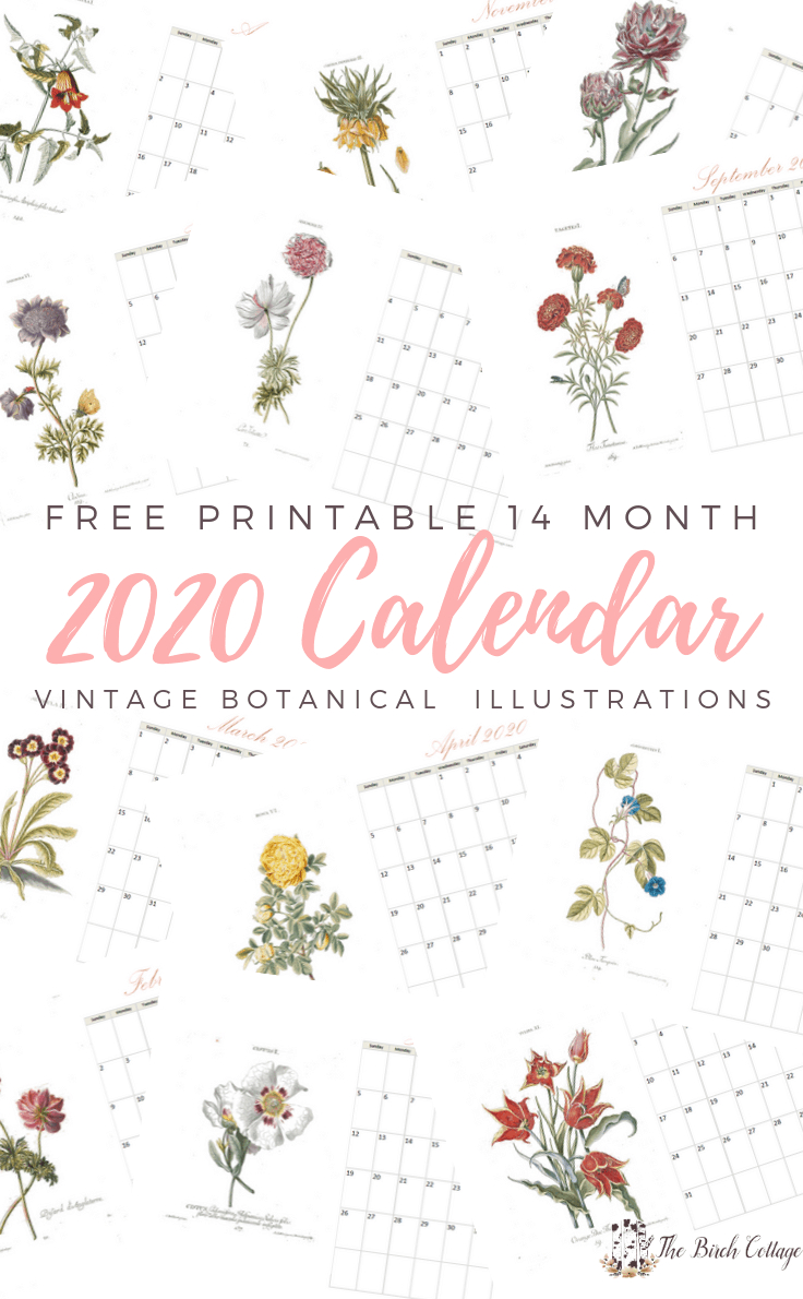 2020 Printable Monthly Calendar With Vintage Botanical Art