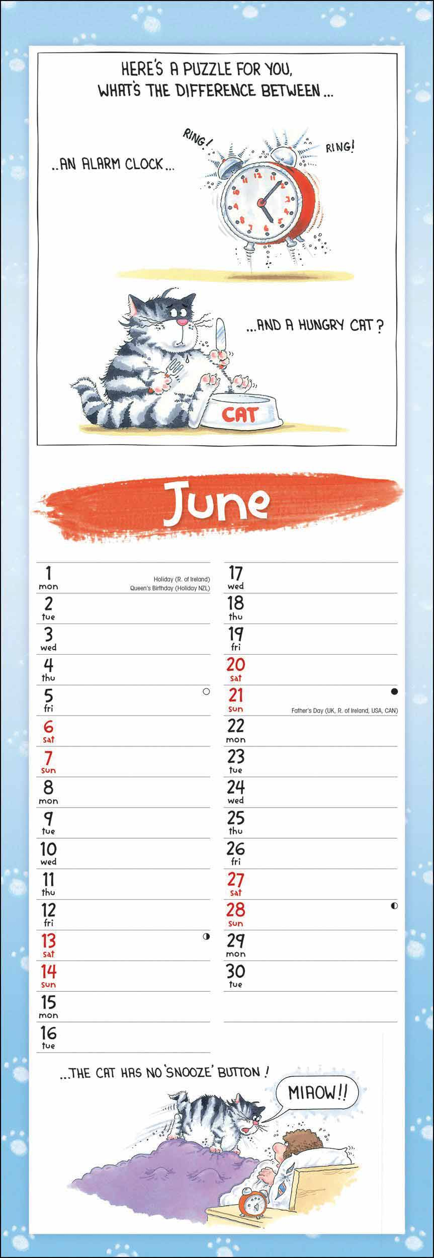 9 Lives Slim Calendar 2020