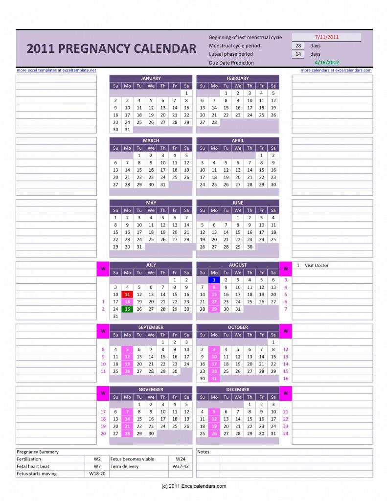 A Pregnancy Calendar - Wpa.wpart.co