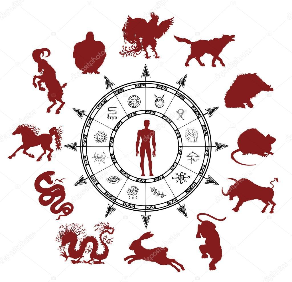 Силуэты Китайских Зодиаковых Животных — Векторное