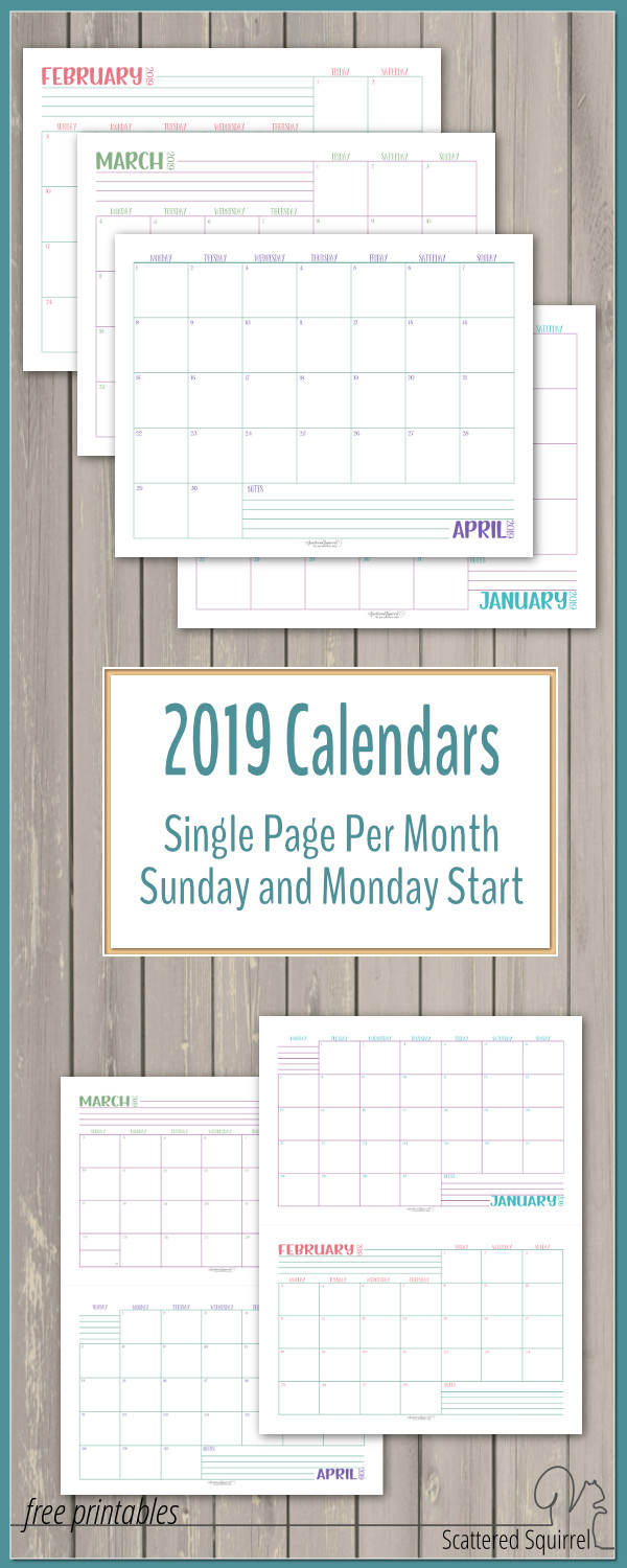 Dated 2019 Calendars Single Page Per Month - Scattered Squirrel
