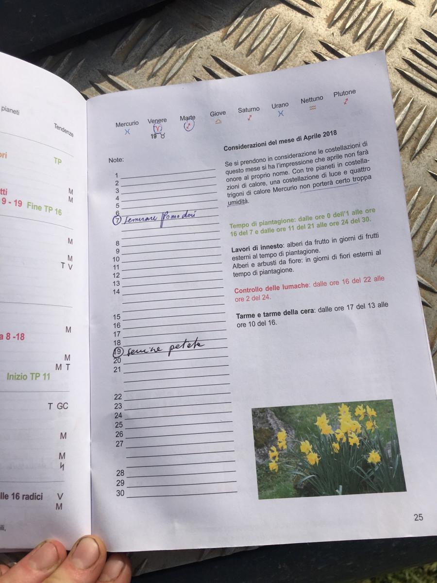 Lunar Calendar Planting – Farming And Food Culture In Italy