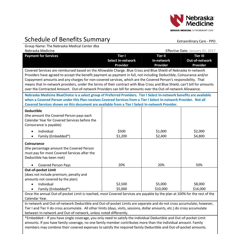 Ppo Bcbs Insurance Plan Nebraska Medicine.pdf | Docdroid