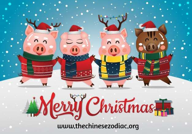 Chinese New Year 2020 - Spring Festival Celebration