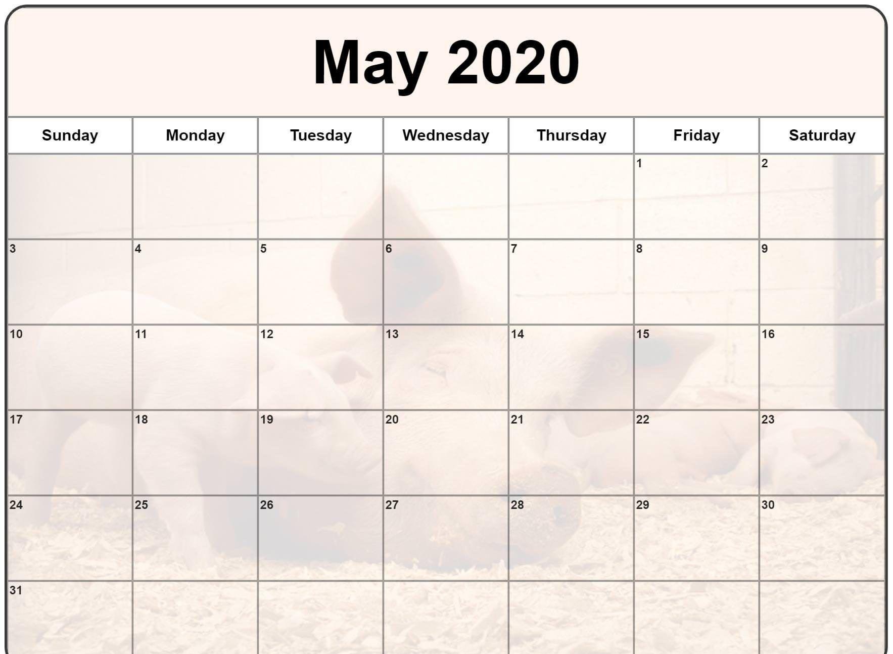 May 2020 Calendar With Holidays | Best Calendar Template
