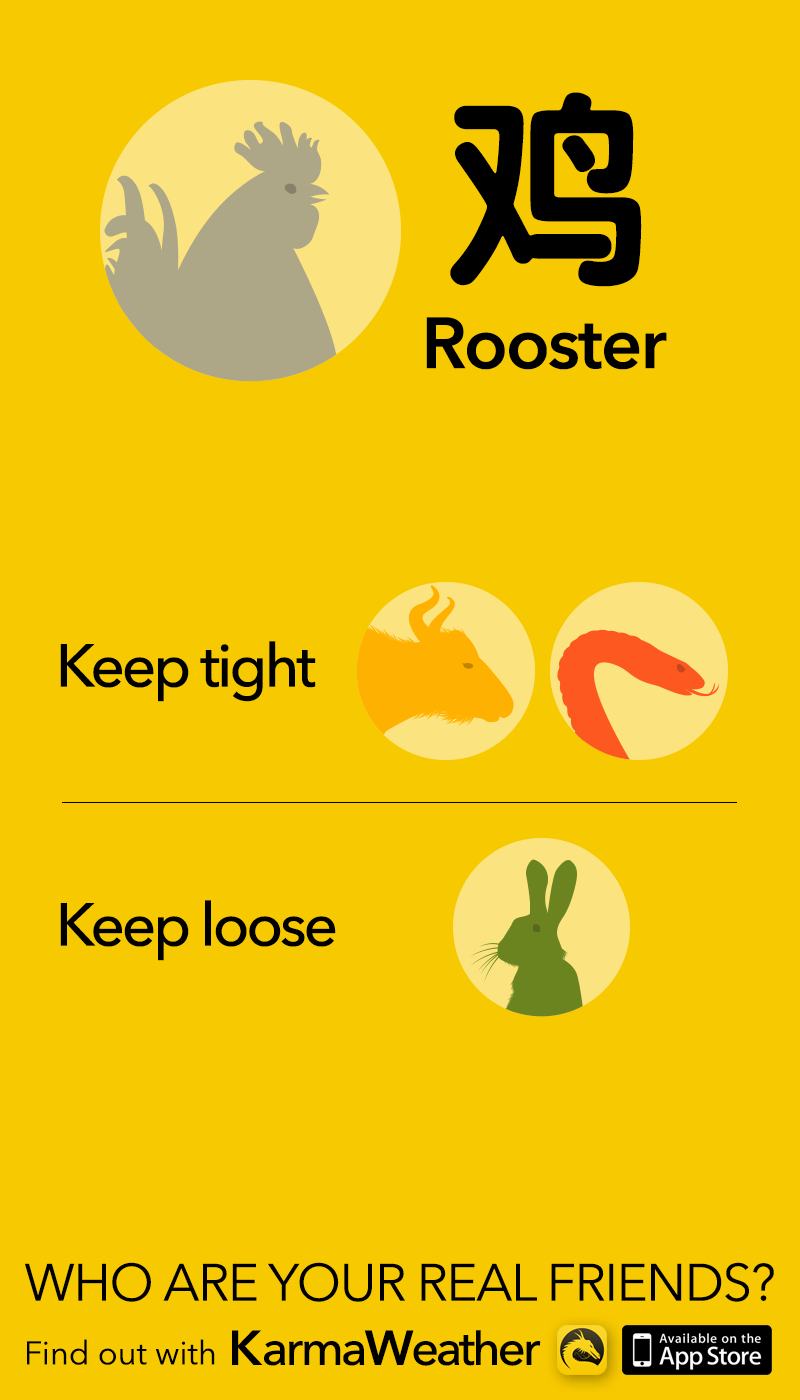 Rooster 鸡 - Sign Compatibility - Chinese Astrology Tips #