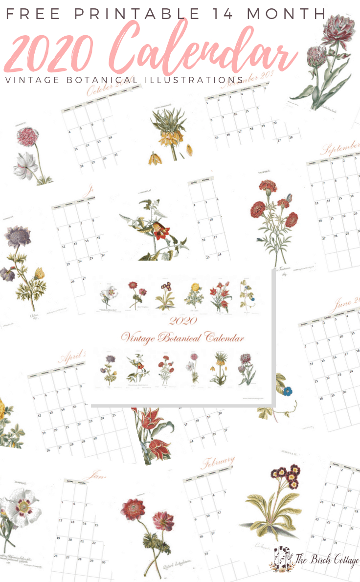2020 Printable Monthly Calendar With Vintage Botanical Art