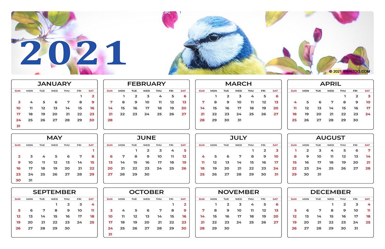 Beautiful Spring Bird On A Branch: 2021 Calendar 11X17