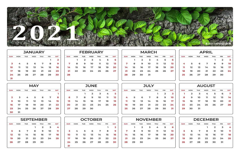 Wild Green Leaves On A Tree Branch: 2021 Calendar 11X17